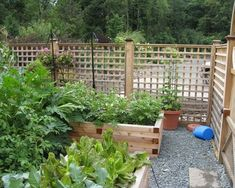garden design with wooden fence and raised bed containers