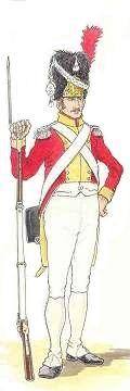 Le régiment des grenadiers de la Garde royale (Leibgrenadiergarde) comptait deux bataillons de 800 hommes. Les grenadiers portent le bonnet à poil en tenue de parade, le schako dans les autres circonstances.
