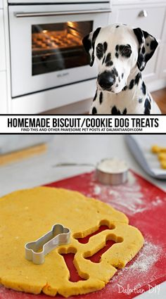 An introduction to making homemade baked biscuit dog treats, ingredients, and troubleshooting common DIY dog treat baking issues. Pumpkin Dog Treats, Diy Dog Treats, Homemade Dog Treats, Dog Treat Recipes, Healthy Dog Treats, Dog Food Recipes, Homemade Biscuits, Dog Biscuits, Dog Treat Bag