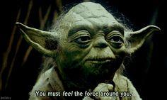 Les 15 Meilleures Répliques de Yoda | Buzzly