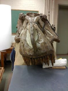 Twitter / Salerno_Thomas: #FossilFriday A rather ...