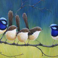 Fairy Wrens Wrens, Altered Art, Castle, Fairy, Animals, Color, Colour, Animaux, Animal