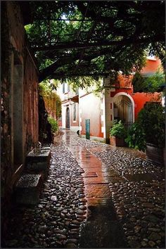 Rainy Day, Valbania, Italy