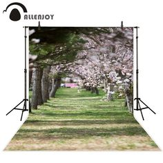 Allenjoy photography background grass lawn and cherry blossoms spring Funds for newborn background for photographic studio
