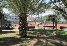 """A Helen De Cesare la vittoria nel torneo di tennis open femminile """"Città di Alba Adriatica"""" - Attualità - Primo Piano"""