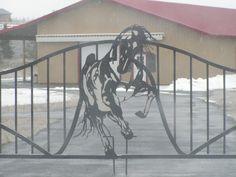 Acutech water jet cut steel horse design entrance gate x 1200 px