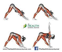 © Sasham | Dreamstime.com - Yoga exercise. Triangle Pose. Trikonasana. Female