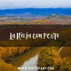 Escápate a la tierra del vino en compañía de tu perro. Aquí encontrarás los mejores alojamientos que aceptan perros en La Rioja. Disfruta de una escapada en compañía de tu familia y amigos, humanos y perrunos. Descubre todos los detalles del alojamiento pinchando en cada ficha.