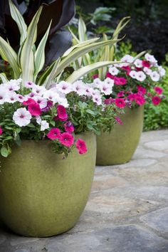 Selling your home? Try putting some pots like these near your front door to welcome prospective Buyers. Make that first impression, impressive!