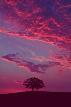 pink clouds http://japan-russia.jimdo.com/moscow-lonely-planet-amazon-forum-allsaints/