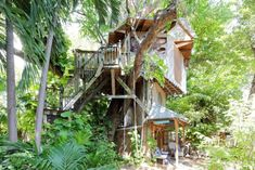 If you're looking for an out-of-the-box experience in Florida where you can spend the night in a treetop abode, then this is the place for you.
