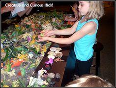 Creative and Curious Kids!: Museum Sensory Play