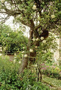Country Garden: .
