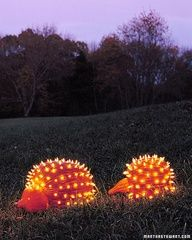 Porcupine Pumkins - wonder if i can dot his with my minis?