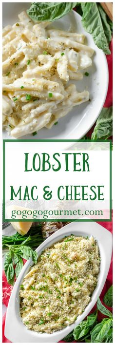Creamy and cheesy and packed with succulent lobster, this pasta dish is sure to be a favorite main dish OR side dish! | Lobster Mac and Cheese | Go Go Go Gourmet @Go Go Go Gourmet via @gogogogourmet