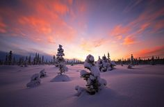 Winters Embrace   Flickr - Photo Sharing!
