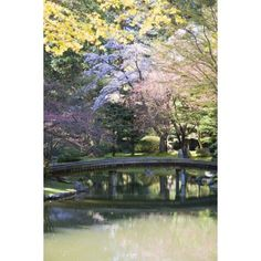 Bridge In Nitobe Memorial Garden A Traditional Japanese Garden Located At The University Of British Columbia Vancouver British Columbia Canada Canvas Art - Peter Langer Design Pics (12 x 19)