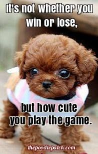 ITS NOT WHETHER YOU WIN OR LOSE BUT HOW CUTE YOU PLAY THE GAME