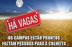 Ha Vagas, English Quotes, Instagram, Portuguese, Professor, Israel, Religion Posters, Words Of Jesus, Religious Quotes