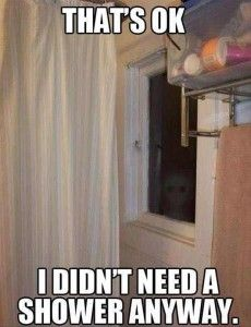 no shower needed