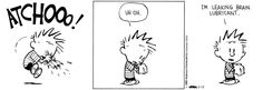 The Curious Brain » Search Results » calvin