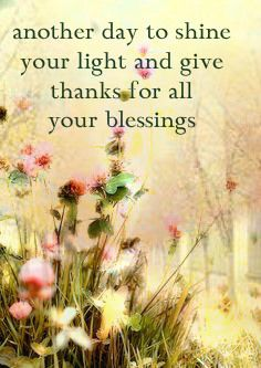 Gratitude, shine your light today! Enjoy all that you have. Share your love today. <3 :)