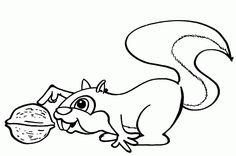 Squirrel Coloring Pages Coloringpagesabc