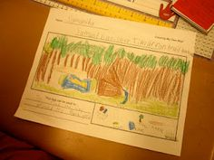 Create your own maps! First grade map skills!
