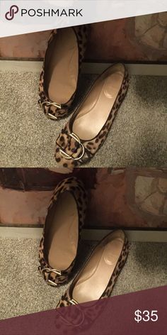 Baby doll leopard print shoes are darling! Leopard print flat baby doll shoes with gold buckle on the top. Great for the office or a night on the town Shoes Flats & Loafers