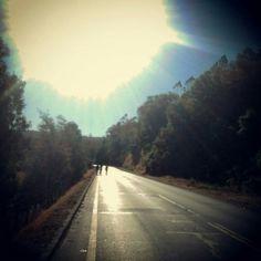 Camino a Pastene