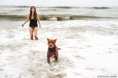 Stunning Photos Show Couples Final Adventure At The Beach With Their Dying Dog