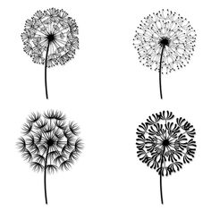 Black and White Dandelion Tattoos