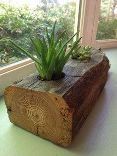 1870s Farmhouse Reclaimed Heart Pine Succulent by LeBrunDesignsInc, $68.00