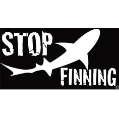 No one needs soup that bad....stop the cruelty, stop the indignity of finning