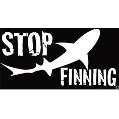 Stop Shark Finning Bumper Sticker