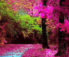 awesome colors!