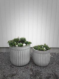www.bybinett.se Plants, Plant, Planets