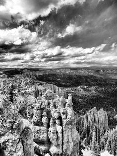 Bryce Canyon in Black and White by Dan Sproul