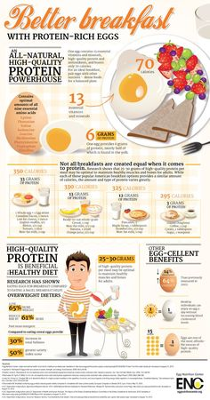 Not all breakfasts are created equal when it comes to protein. One egg provides 13 essential vitamins and minerals, high-quality protein, antioxidants (pic) &  5 healthy breakfast foods to help you lose weight (Link)