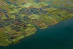 Marais de l'embouchure de la Seudre - La Tremblade 17390 - Charente Maritime (17) - Poitou Charente Embouchure, Poitou Charentes, France, French Food, City Photo, Photos, Powered Parachute, Aerial Photography, Gifts