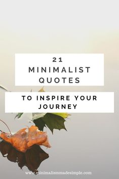Get your minimalist inspiration by checking out these 21 minimalist quotes for simple living. Find inspiration in the simple life with quotes from those who have mastered the art of intentional, minimal living. Minimalist Living Tips, Minimalist Kids, Becoming Minimalist, Minimalist Quotes, Minimal Living, Minimalist Lifestyle, Minimalism Blog, Living Simple Life, King Quotes