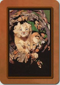 Window-Two Lynx Kittens  by Fred  $30  bfc-creations.com