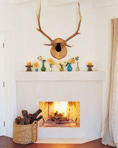 """I actually wouldn't mind Aaron killing an elk to serve as """"exotic"""" decor for our fireplace."""