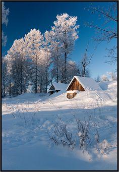 По крышу в снегу. Питерская губерния, окрестности г. Луга Автор: Лунный Ежик