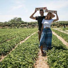 Strawberry picking with my lover  Instagram josie_sanders