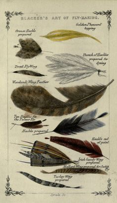 Vintage Fly Fishing Art | Vintage Fly Fishing Art