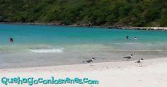 ¡Esta semana les tenemos una lista de 20 cosas para hacer en el Este de Puerto Rico!