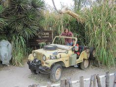 November 2011  Puebla Africam Safari   Posing on a Jeep like a good tourist!