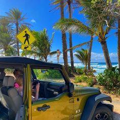 Beach Aesthetic, Summer Aesthetic, Travel Aesthetic, Aesthetic Body, Flower Aesthetic, Summer Feeling, Summer Vibes, Winter Wonderland, Moving To Hawaii