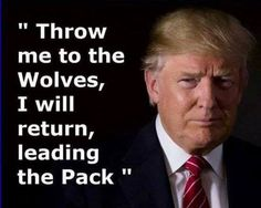 Too bad the wolves don't eat you. Imagine if Hillary was president and she acted like Trump she would have been impeached. Total gong show. Pro Trump, Trump One, Vote Trump, Gucci Logo, Melania Trump, Trump Is My President, Greatest Presidents, American Presidents, Trump Train